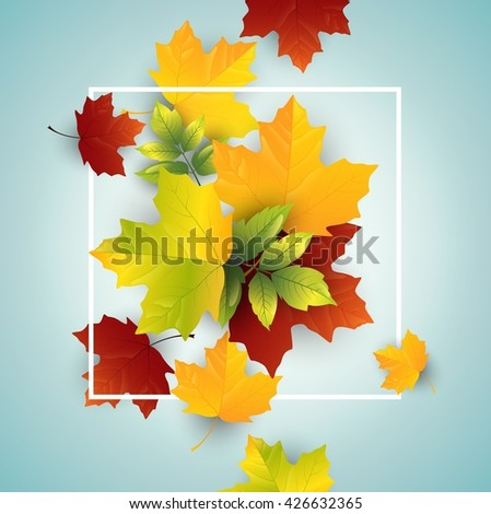 leaves autumn on blue