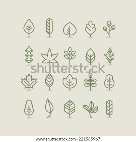 Leaves collection, outline, linear, line