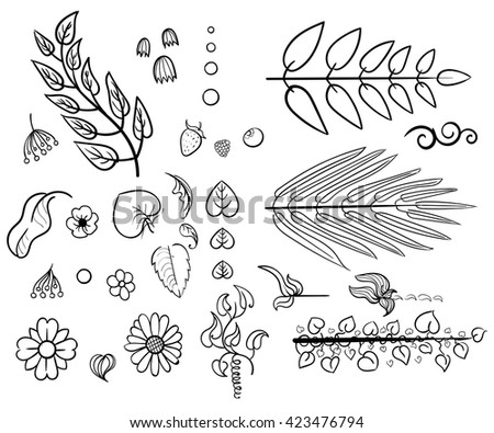 Leaves decor. Set of doodle design elements wreath floral elements. The set of hand drawn vector decorative elements for your design. Leaves swirls, floral elements