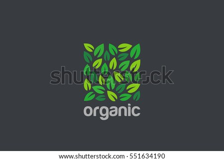 Leaves Eco Logo square shape design vector template. Organic Natural Garden Park Logotype concept icon
