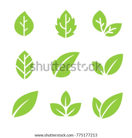 Leaves icon vector set