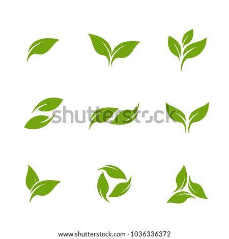 Leaves Set Logo Vector Template