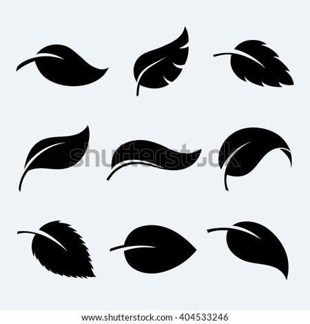 Leaves vector set isolated from the background. Leaves icon different shapes in modern flat style.