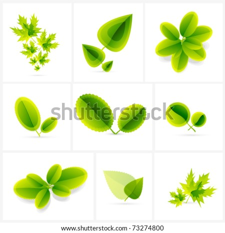 Leaves. Vector summer compositions. Icon set