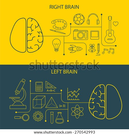 left and right brain functions concept