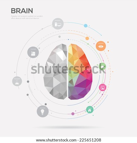 Left brain and right brain Idea concept background .vector illustration
