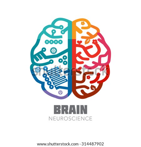 Left & Right Human Brain hemispheres vector icon. Brain sign design template for Neuroscience & Medicine. Left and right brain functions. Creative & analytical brain division. Vector illustration.