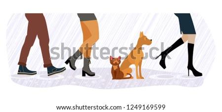 legs of people group walking in