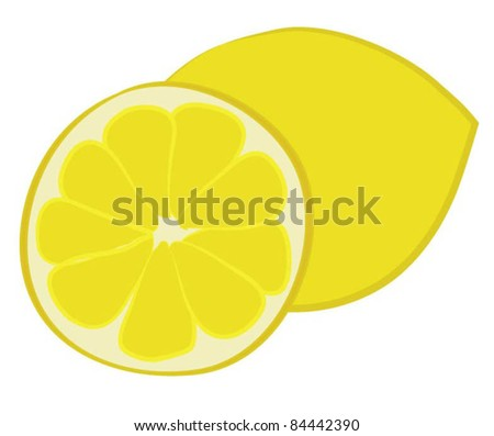 lemon citrus vector
