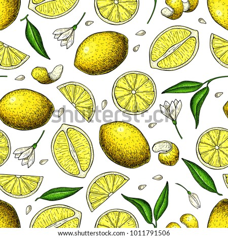 lemon vector seamless pattern