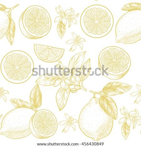 lemons  and flowers vector