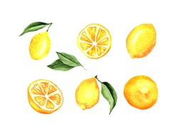Lemons Watercolor Set. Lemons and leaves. Vector artistic collection isolated on white. Elements for party decorations