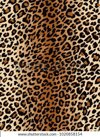 leopard animal pattern