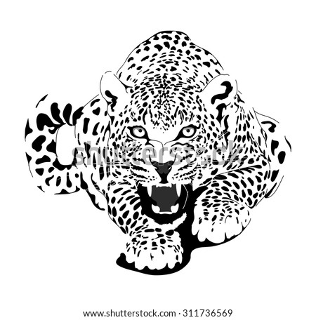 Leopard in black interpretation