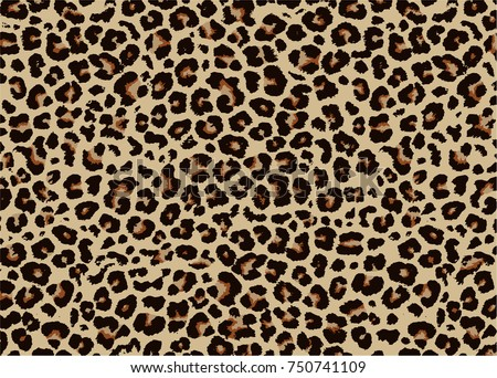 leopard pattern design  vector