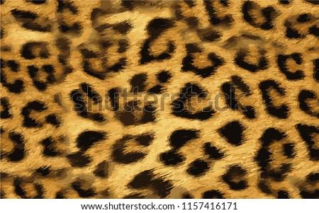 Leopard wild pattern