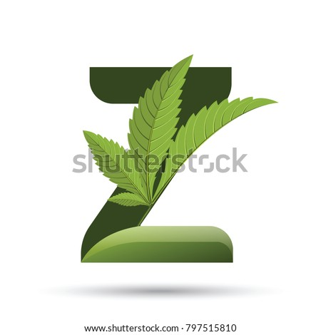 letter Z. medical marijuana, cannabis green leaf logo. vector illustration.