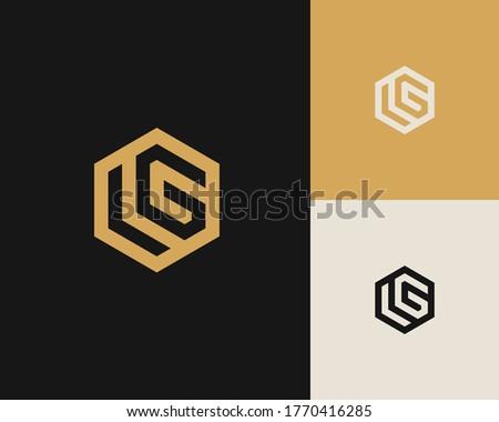 Letters L and G or LG line logo design. Linear minimal stylish emblem. Luxury elegant vector element. Premium business logotype. Graphic alphabet symbol for corporate business identity Stok fotoğraf ©