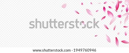 light flower vector panoramic