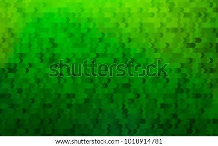 light green vector abstract