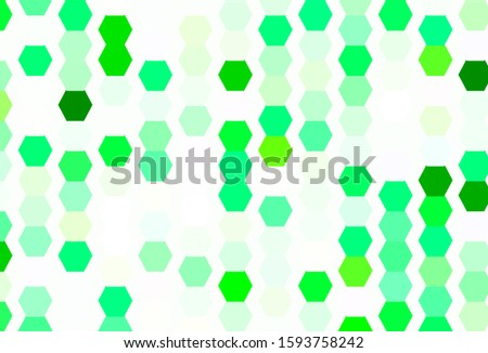 Light Green vector background with hexagons. Colorful hexagons on blur backdrop. Design for your business advert.