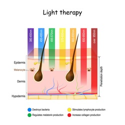 Light therapy. phototherapy of the skin. heliotherapy treatment for seasonal affective disorder (SAD). skin and specific wavelengths. using polychromatic polarised light for skincare. Vector