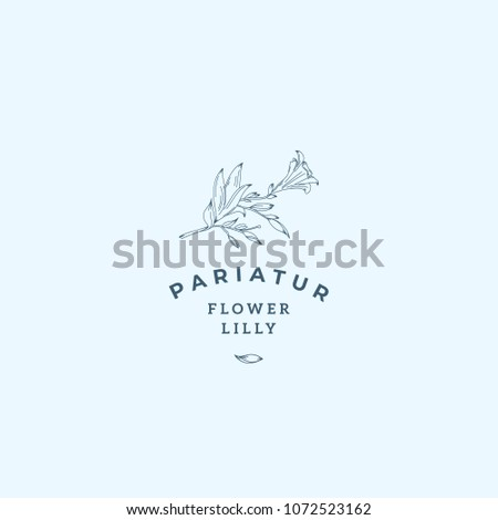 lilly flower abstract vector...