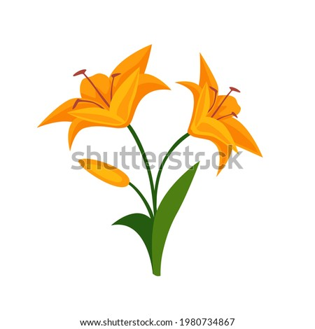 lily flat vector icon  lily