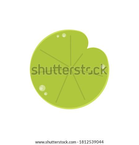 Lily pad vector. Lily pad logo design. Stockfoto ©