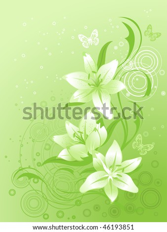 Lily, vector floral background