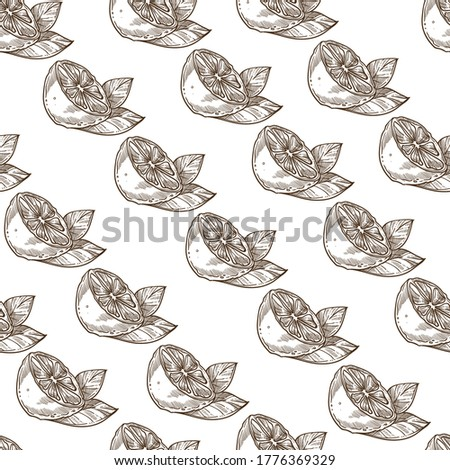 Lime or lemon slice with leaf, seamless pattern of cut citrus. Juicy plant with vitamin c, dieting or detoxing. Nutrition or dessert, snack taste. Monochrome sketch outline, vector in flat style