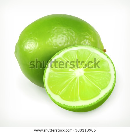 lime vector icon fresh and