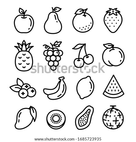line and  vector illustration of fruits.