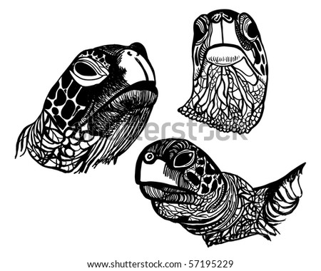 Sea Turtle Sketches http://www.shutterstock.com/pic-57195229/stock-vector-line-art-sketches-of-sea-turtle-faces.html