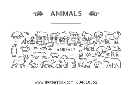 Line banner for american, african and australian animals. Linear concept for pets and farm animals. Open path.