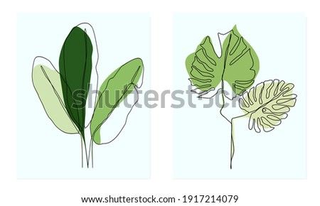 Line draft tropical leaves ,Abstract minimal art banana leaves with monstera leaves ,minimalist line pattern leaves Photo stock ©