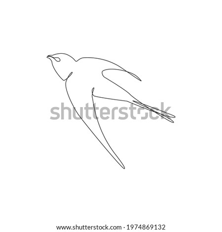 Line drawing swifts bird tattoo Vector Illustration. Free single line drawing of Swifts. Outline drawing of birds silhouette one line hand drawing art. Flying swifts bird icon line drawn Birds species