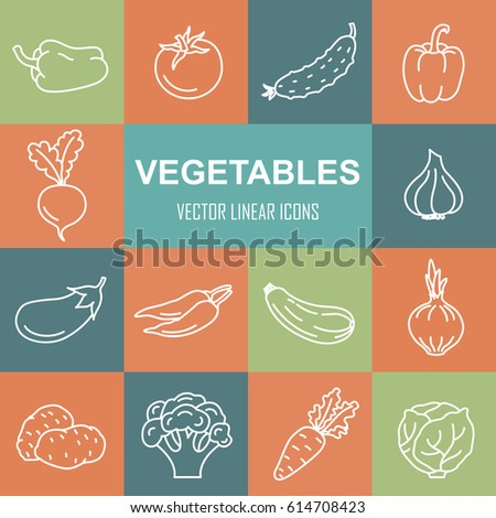 Linear icons of vegetables. Cooking and healthy eating. Vector illustration.