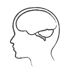 Linear silhouette of the head and brain. Vector illustration.