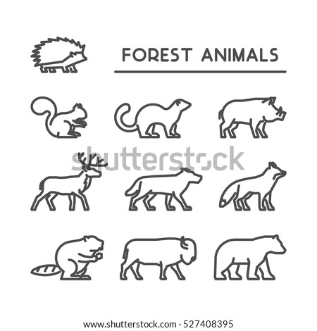 Linear vector icon set of wild animals on white background. Line silhouettes boar, squirrels, deer, beaver, fox, puma, wolf, hedgehog and bear.