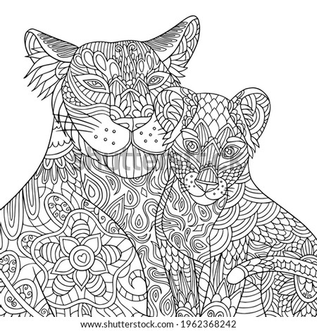 Lion and lionet coloring book page for adult. Vector cartoon predators with doodle and zentangle elements for antistress. Wild cats line art.