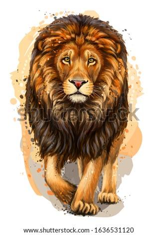 lion artistic  color