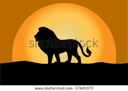 lion at twilight