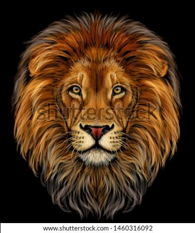lion color  realistic