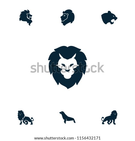 lion icon collection of 7 lion