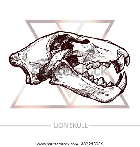 lion skull trendy t shirt