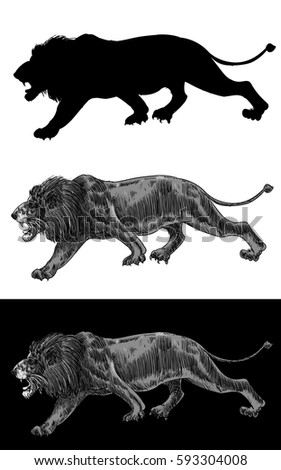 lion walking  silhouette
