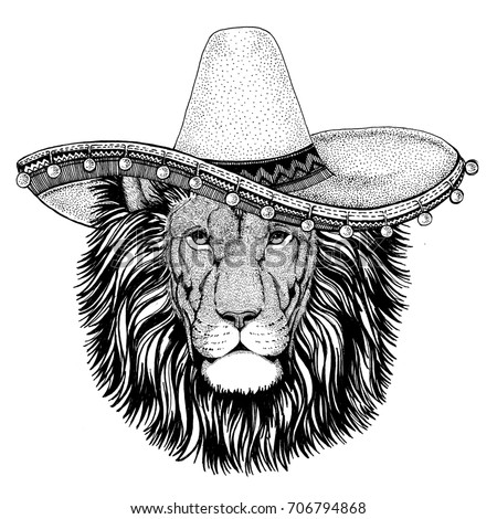Lion Wild cat wearing sombero Vector illustration Old classic vintage style illustration for t-shirt, poster, banner, embem, badge, tattoo, zoo