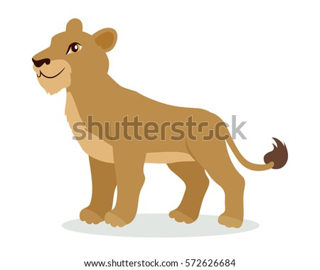 Lioness or lion cub cartoon character. Adult lion female flat vector isolated on white. African fauna. Wild animal illustration for zoo ad, nature concept, children book illustrating
