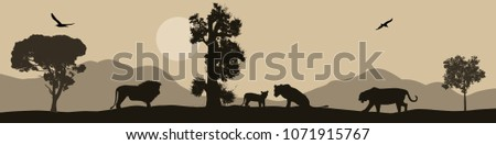 lions silhouette on african